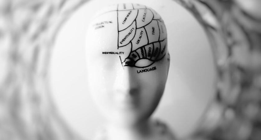 Testowanie implantu mózgu