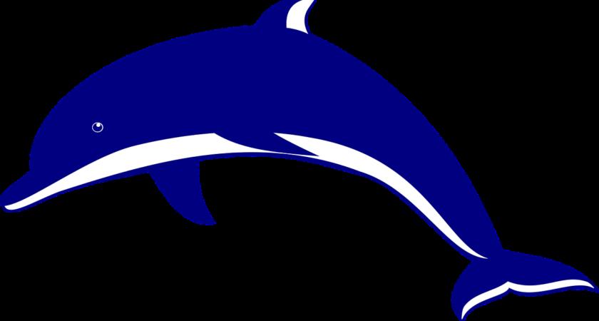 Realistyczny robot-delfin
