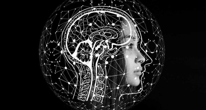 Czy jesteś mądrzejszy od sztucznej inteligencji Amazona?