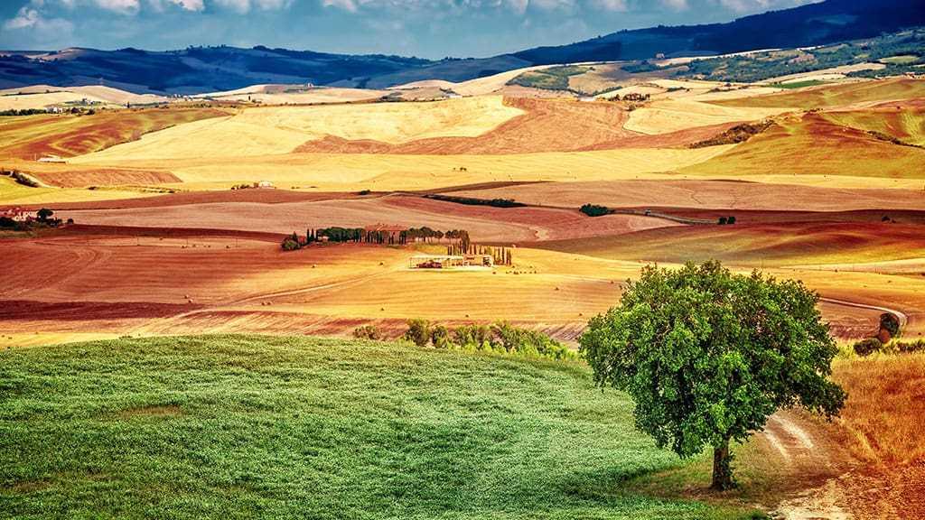 green-land-banner.jpg