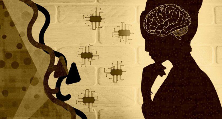 Firma Synchron z Kalifornii ogłosiła wyniki testów chipów ludzkiego mózgu